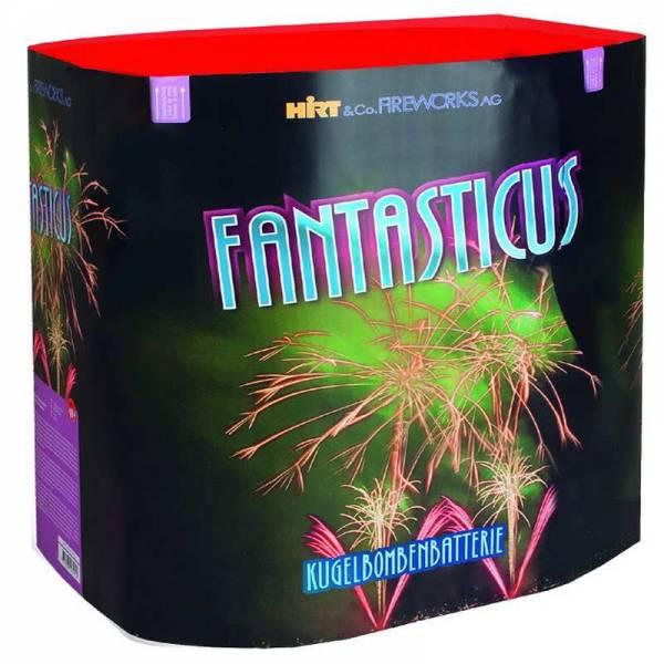 feuerwerk-verkauf-schweiz-feuerwerkbatterie-fantasticus
